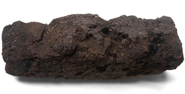 スコットランド産ピート(泥炭)