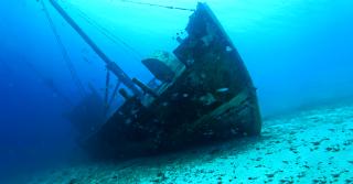 沈没船から発見された100年以上の前のウイスキーオールドボトル